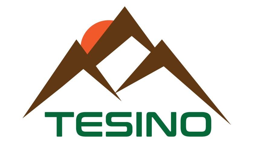 La Valle del Tesino - Pieve Tesino, Castello Tesino, Cinte Tesino